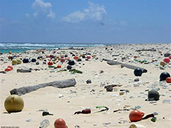 A beach on Laysan Island, thousands of miles from civilization,  is littered with refuse from afar.