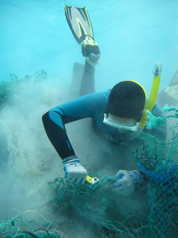 Diver cuts mesh from derelict fishing nets.