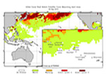 Coral Bleaching Conditions