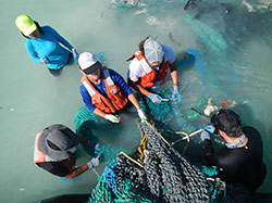 The Marine Debris Team cuts up discarded fishing nets for removal at Pearl and Hermes Atoll.