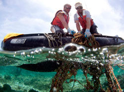 Kevin O'Brien and Brian Yannutz remove derelict fishing gear from a reef at Midway Atoll.