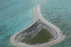 North Island at Pearl & Hermes Atoll in Papahānaumokuākea Marine National Monument.