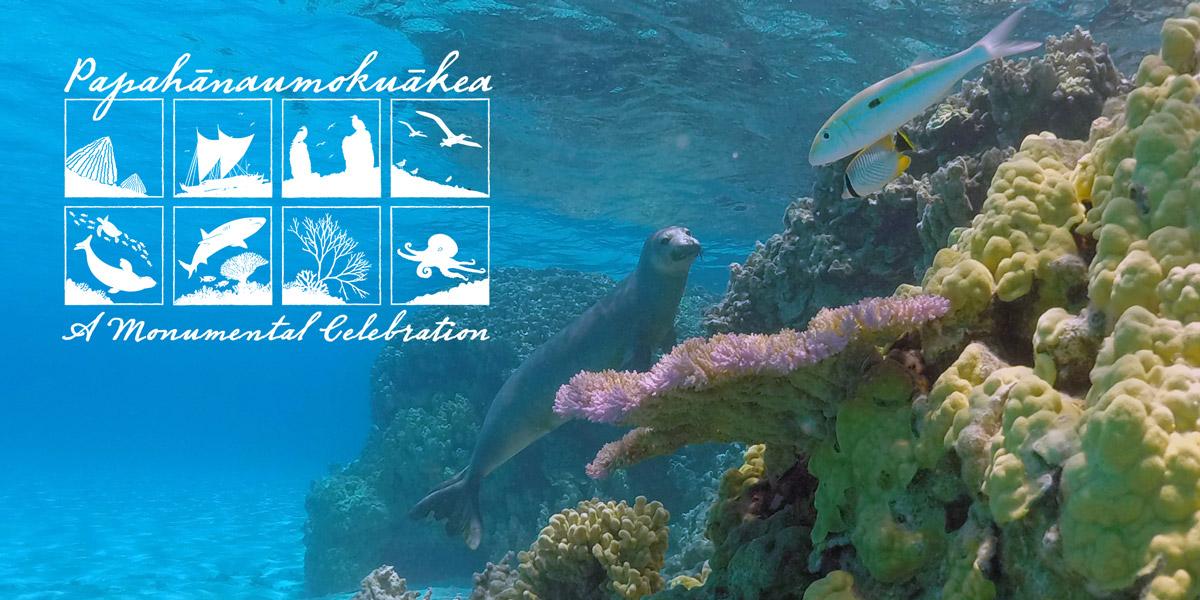Papahānaumokuākea A Monumental Celebration graphic ove a Hawaiian mont seal by a coral reef.