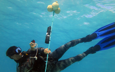 Research diver Mark Deakos photo-documents an acoustic monitoring receiver installed at French Frigate Shoals to track the movements of previously tagged sharks.