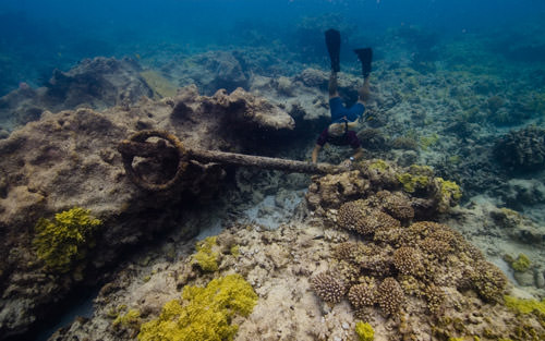 NOAA maritime archaeologist Dr. Kelly Keogh investigates an anchor at the Two Brothers shipwreck site at French Frigate Shoals.