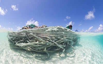 A mass of entangled nets and rope at French Frigate Shoals.