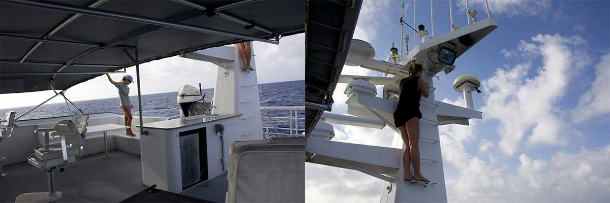 All 6 wāhine staked out a position on the flybridge to search for the elusive acoustic