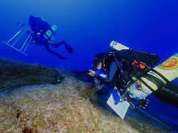 NOAA rebreather divers conduct coral, algae, and fish surveys at 200 feet at Laysan Island.